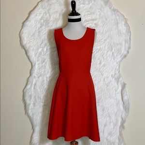 Express Red Fit & Flare Dress